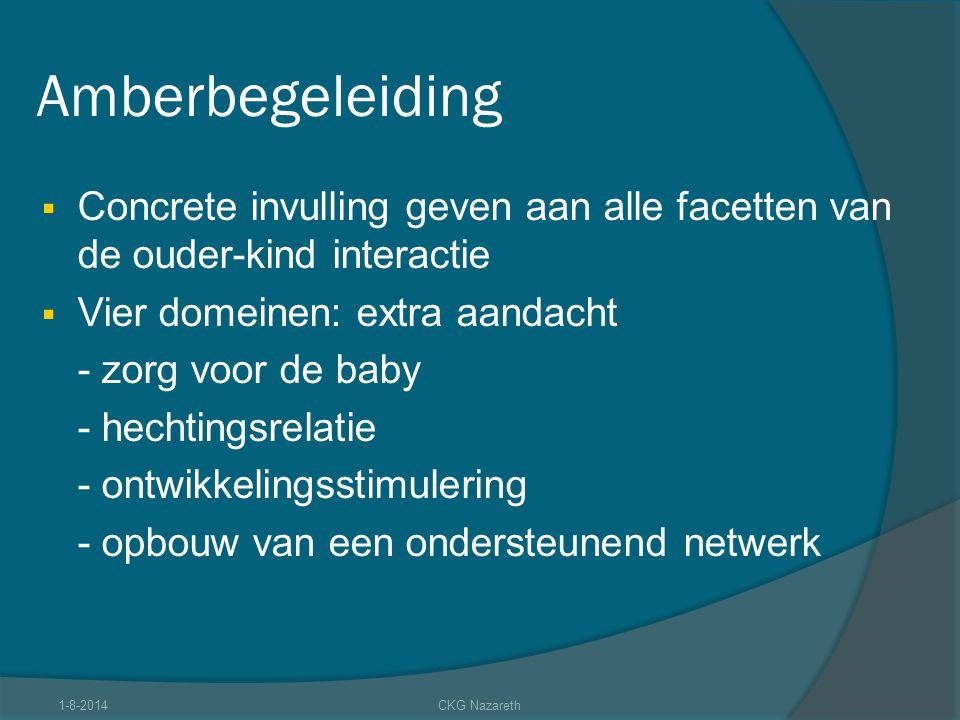 Amberbegeleiding Concrete invulling geven aan alle facetten van de ouder-kind interactie. Vier domeinen: extra aandacht.