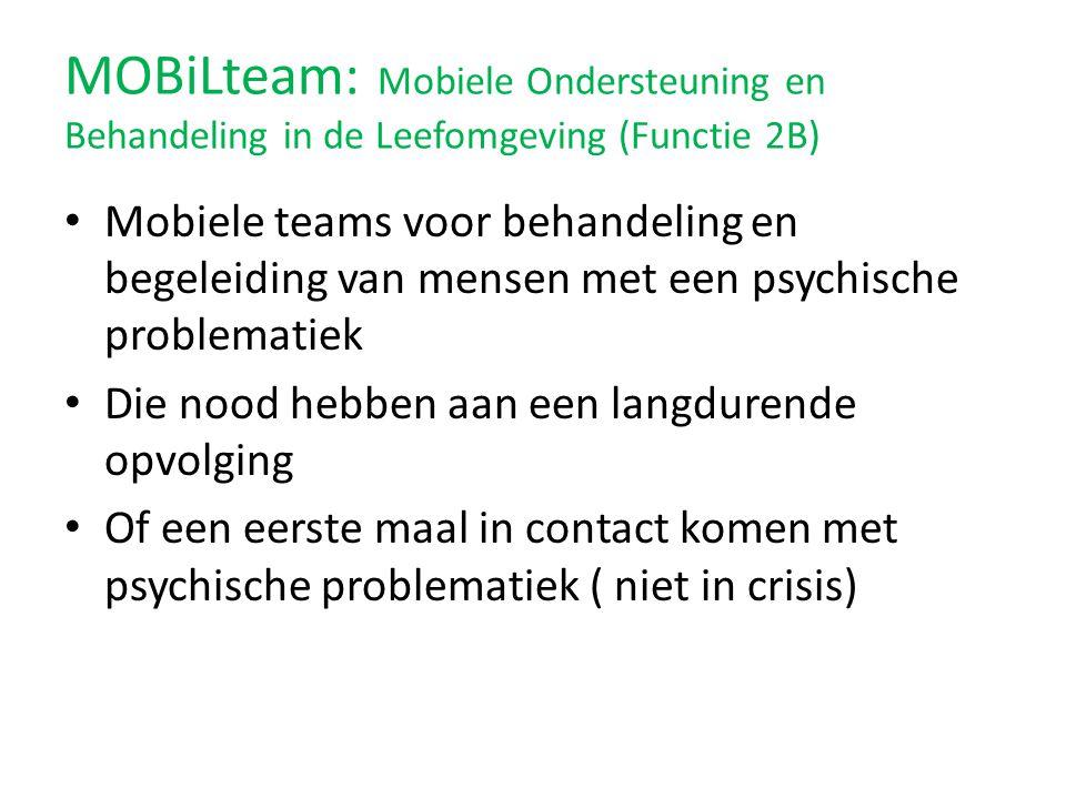 MOBiLteam: Mobiele Ondersteuning en Behandeling in de Leefomgeving (Functie 2B)