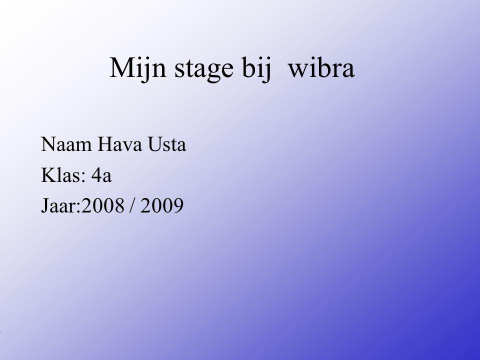 Naam Hava Usta Klas: 4a Jaar:2008 / 2009