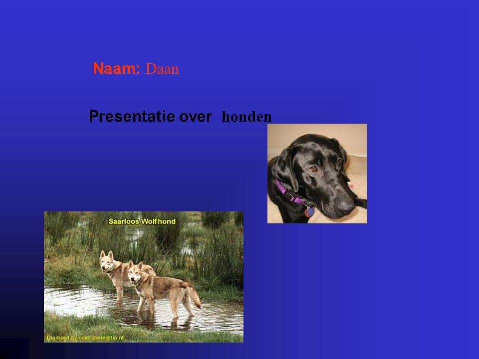 Presentatie over honden