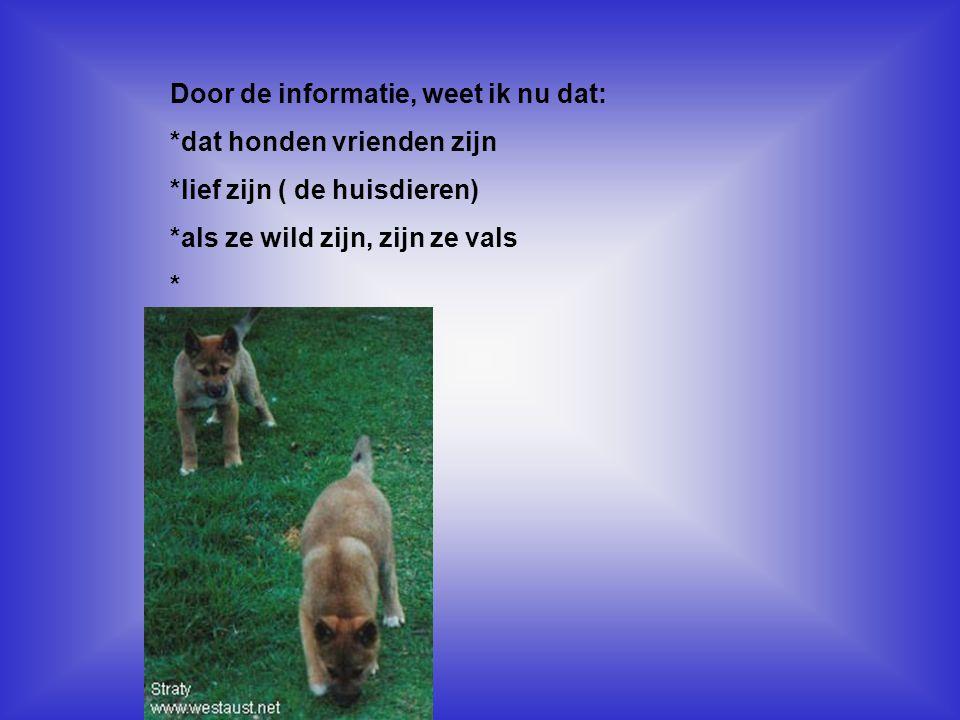 Door de informatie, weet ik nu dat: *dat honden vrienden zijn