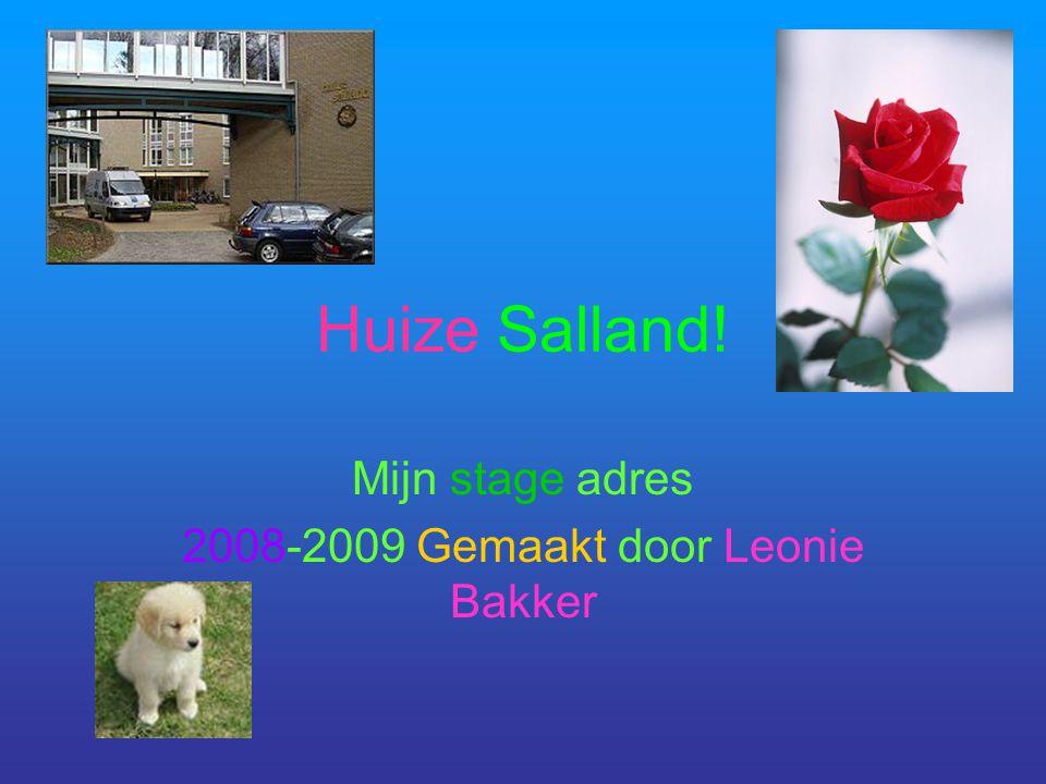Mijn stage adres 2008-2009 Gemaakt door Leonie Bakker