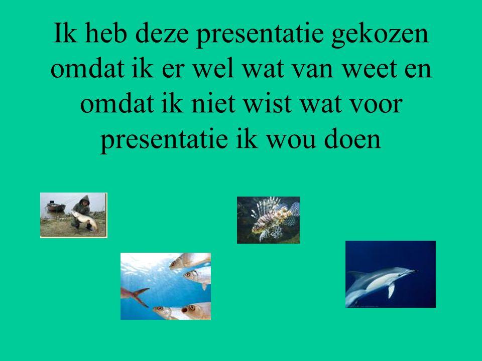 Ik heb deze presentatie gekozen omdat ik er wel wat van weet en omdat ik niet wist wat voor presentatie ik wou doen