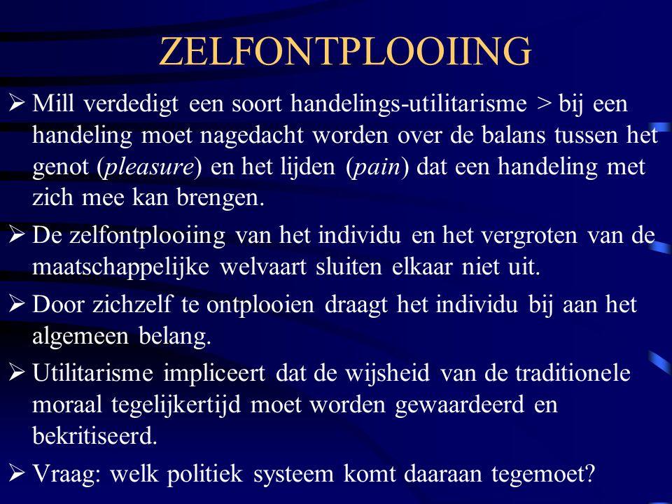 ZELFONTPLOOIING