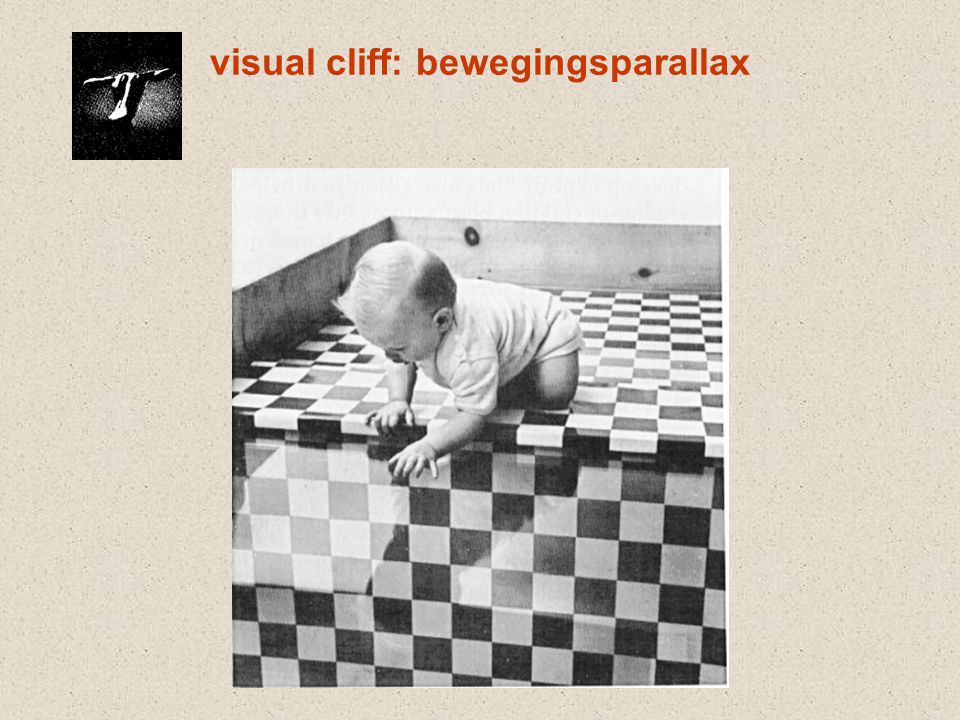 visual cliff: bewegingsparallax