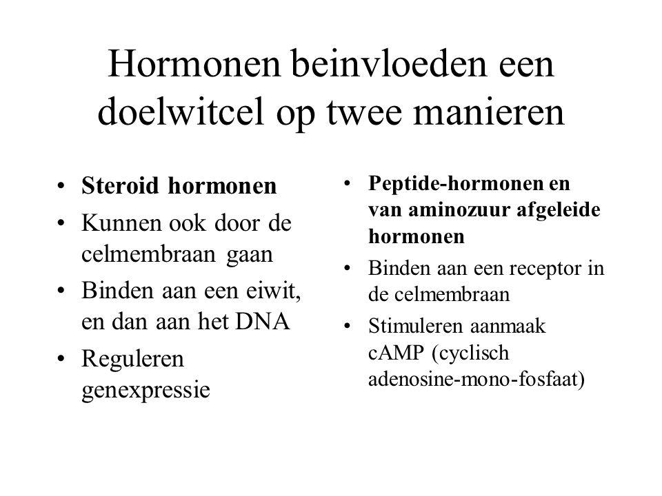 Hormonen beinvloeden een doelwitcel op twee manieren