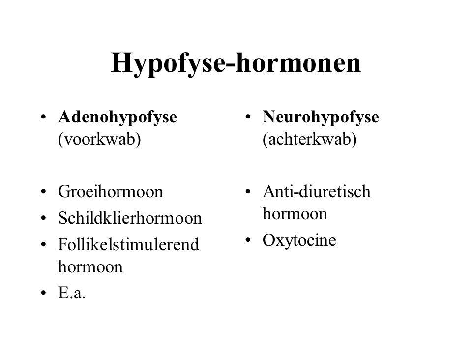 Hypofyse-hormonen Adenohypofyse (voorkwab) Groeihormoon
