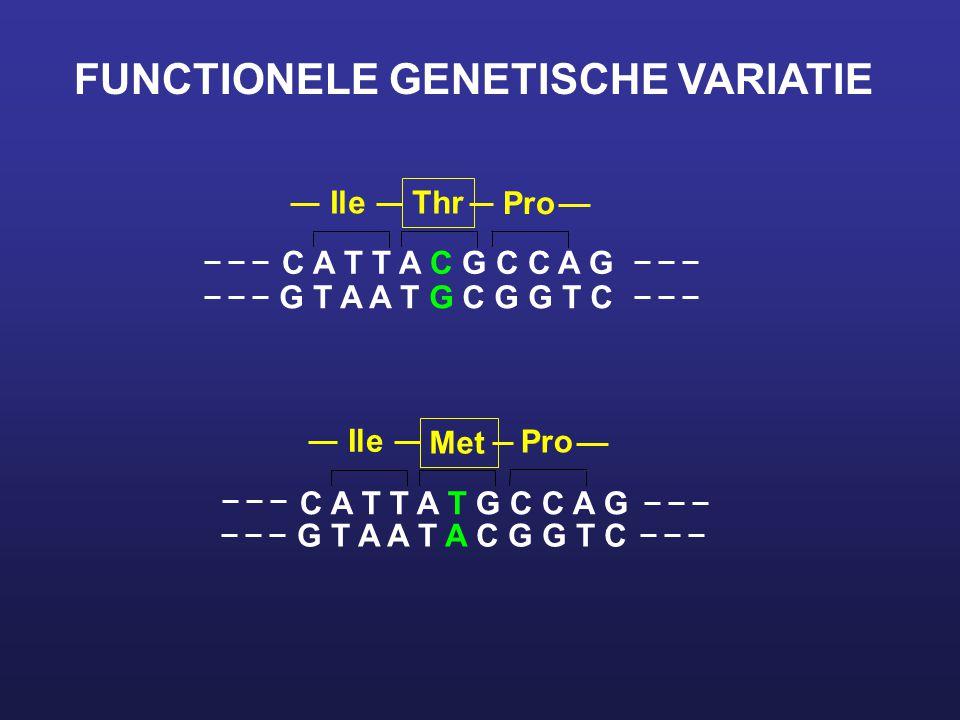 FUNCTIONELE GENETISCHE VARIATIE