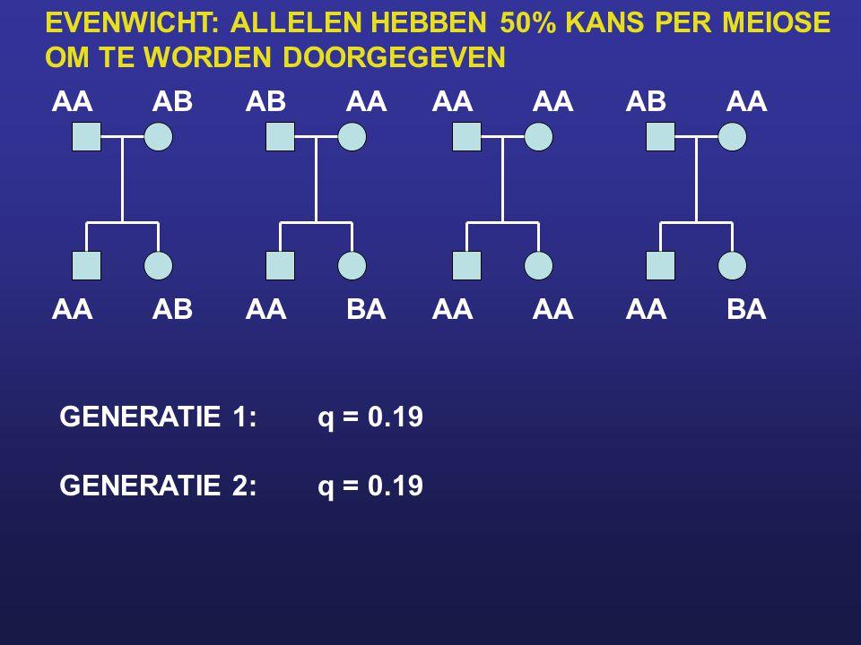 EVENWICHT: ALLELEN HEBBEN 50% KANS PER MEIOSE