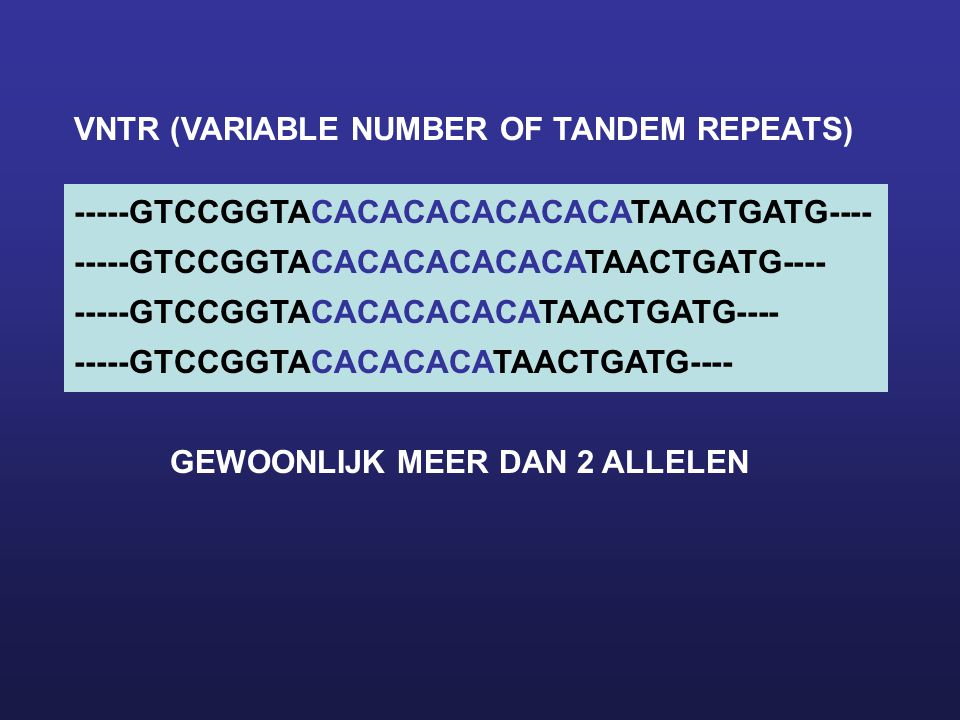 VNTR (VARIABLE NUMBER OF TANDEM REPEATS)