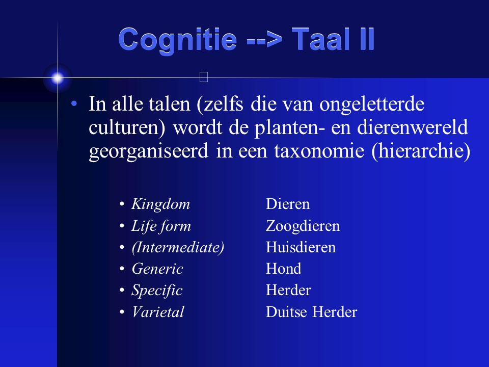 Cognitie --> Taal II