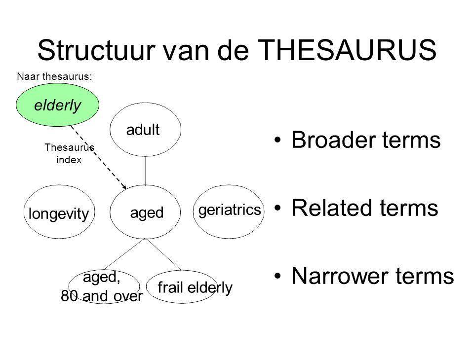 Structuur van de THESAURUS