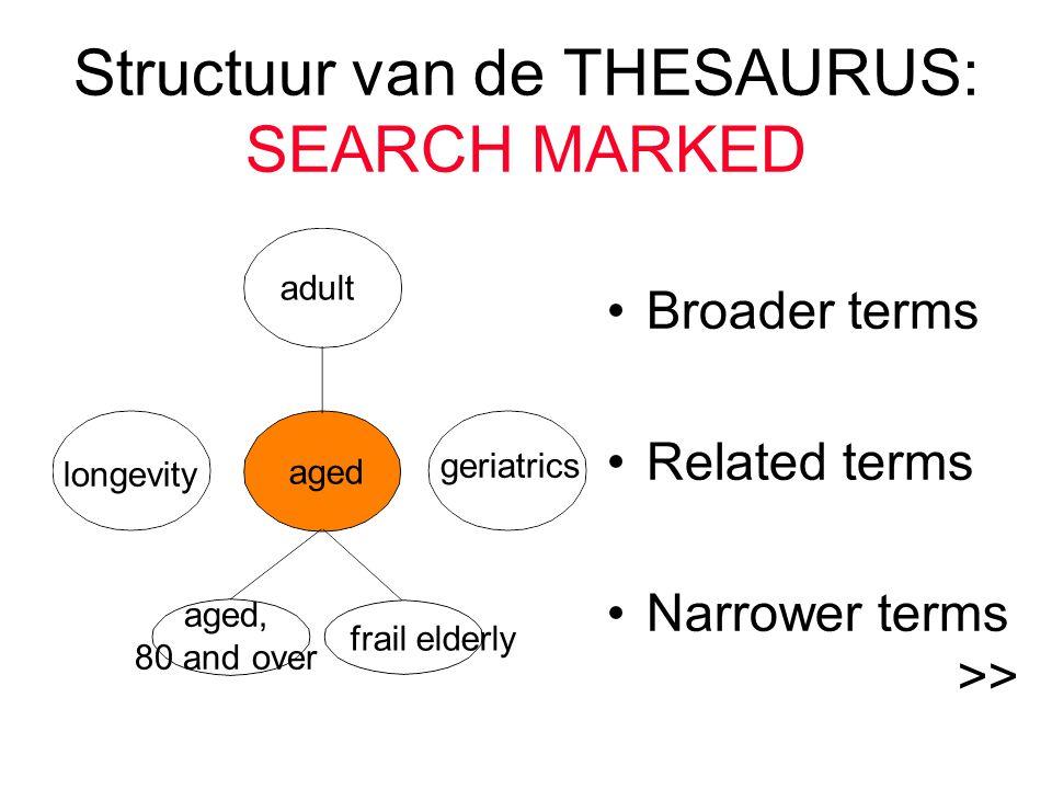 Structuur van de THESAURUS: SEARCH MARKED