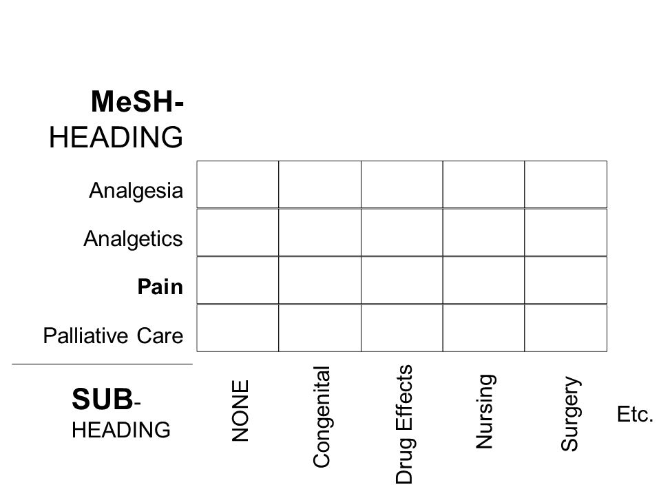 MeSH- HEADING SUB- Analgesia Analgetics Pain Palliative Care HEADING