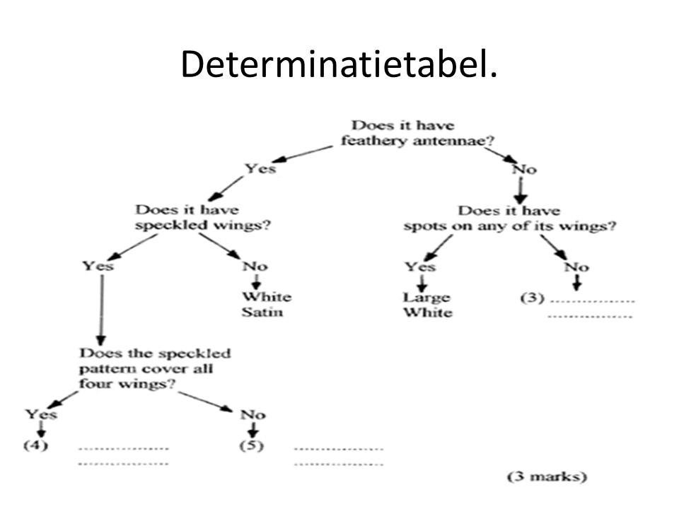 Determinatietabel.