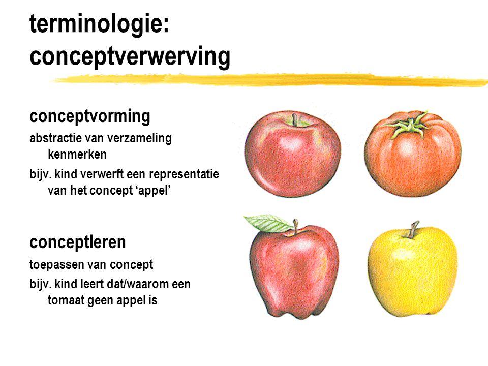 terminologie: conceptverwerving