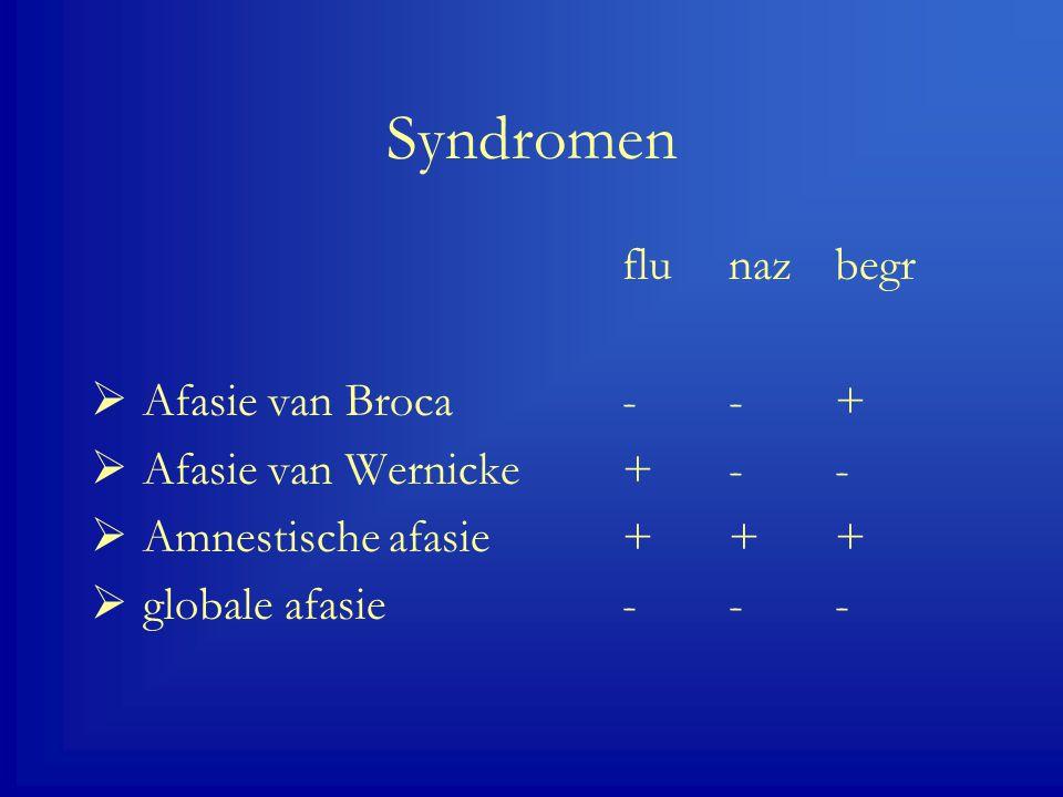 Syndromen flu naz begr Afasie van Broca - - +