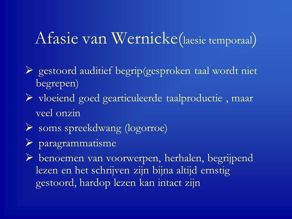 Afasie van Wernicke(laesie temporaal)