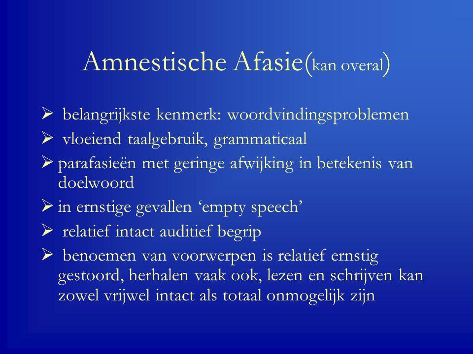 Amnestische Afasie(kan overal)
