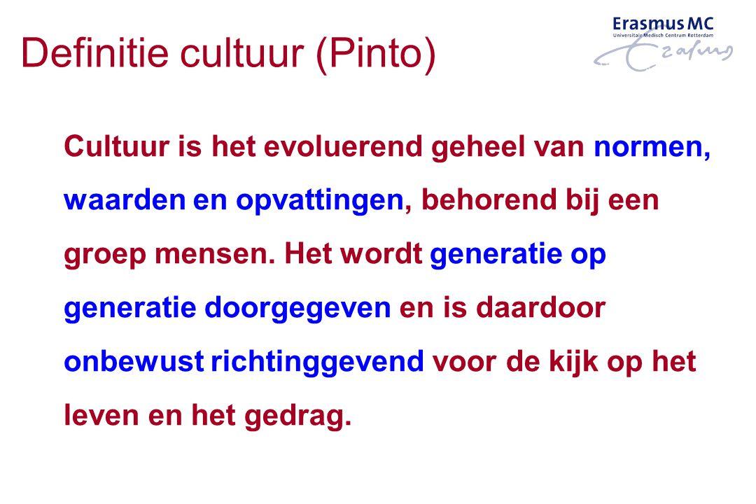 Definitie cultuur (Pinto)