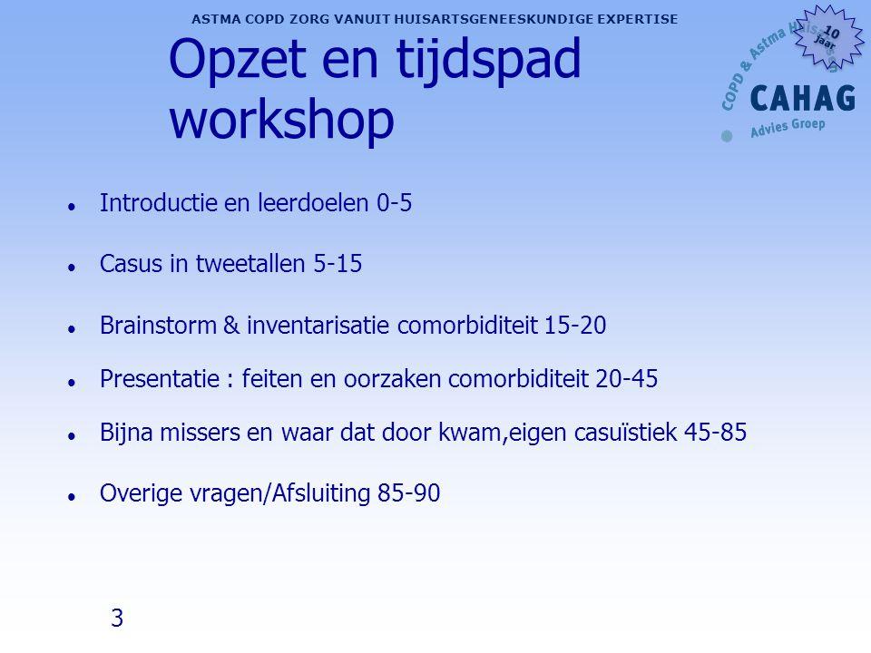 Opzet en tijdspad workshop