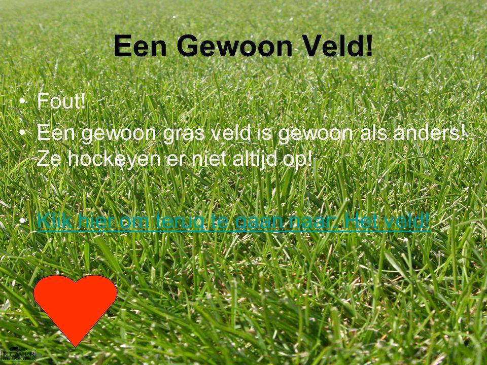 Een Gewoon Veld. Fout. Een gewoon gras veld is gewoon als anders.