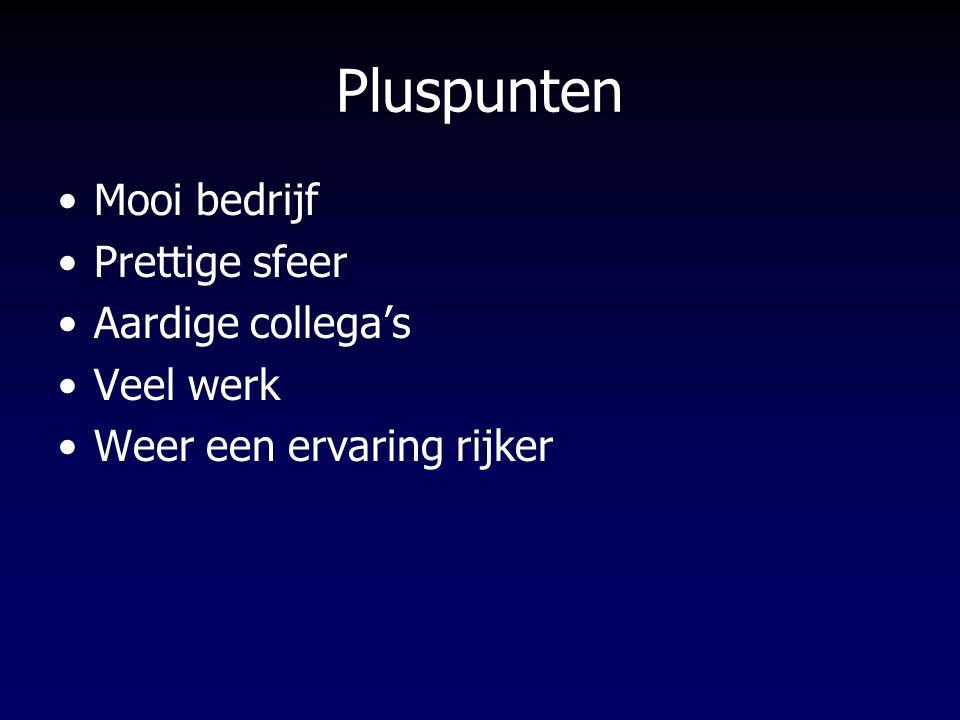 Pluspunten Mooi bedrijf Prettige sfeer Aardige collega's Veel werk