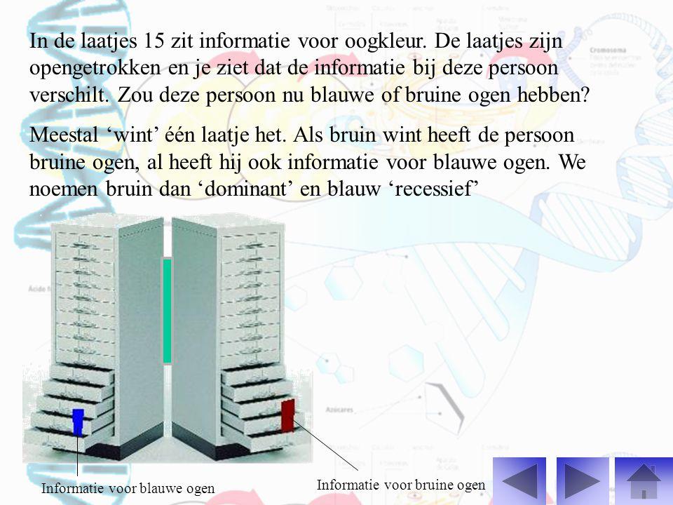 In de laatjes 15 zit informatie voor oogkleur