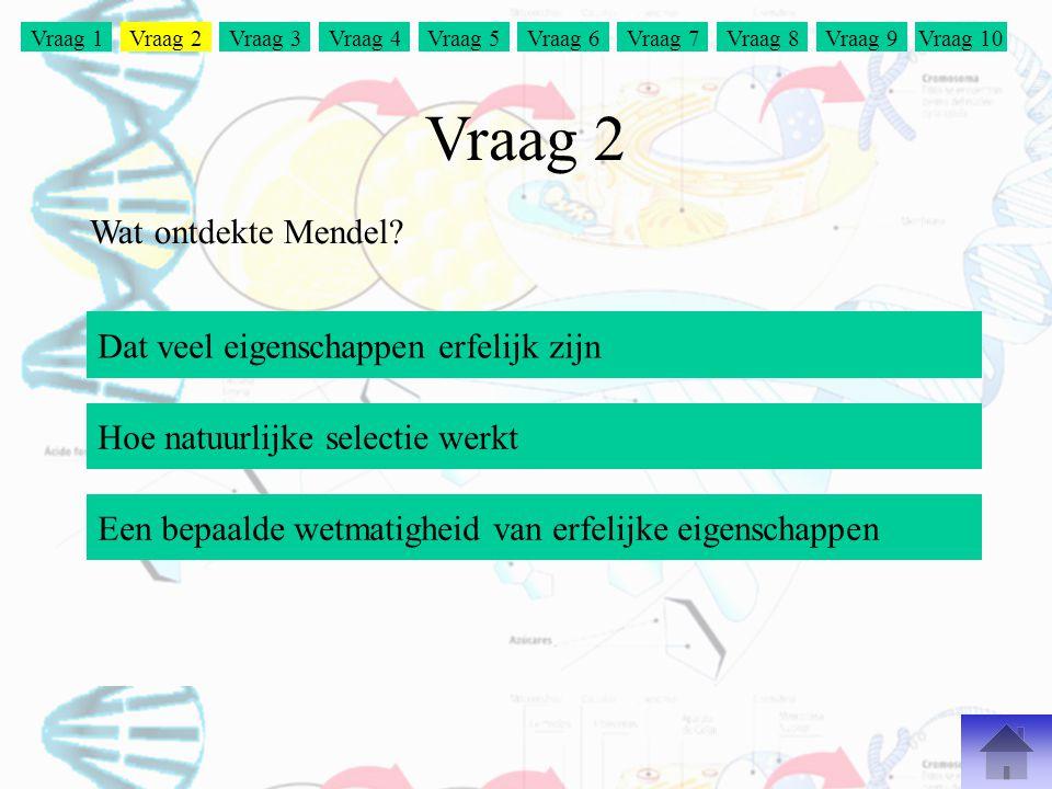 Vraag 2 Wat ontdekte Mendel Dat veel eigenschappen erfelijk zijn