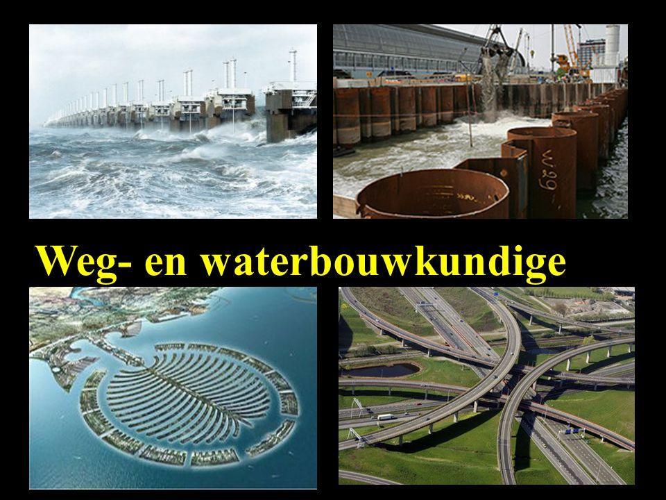 Weg- en waterbouwkundige