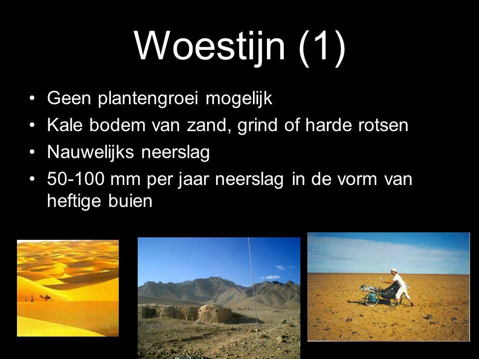Woestijn (1) Geen plantengroei mogelijk
