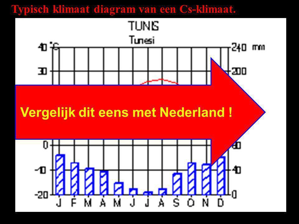 Vergelijk dit eens met Nederland !