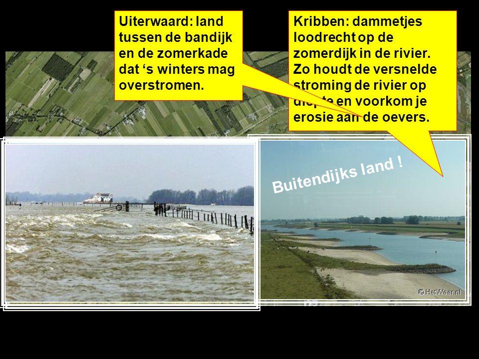 Uiterwaard: land tussen de bandijk en de zomerkade dat 's winters mag overstromen.