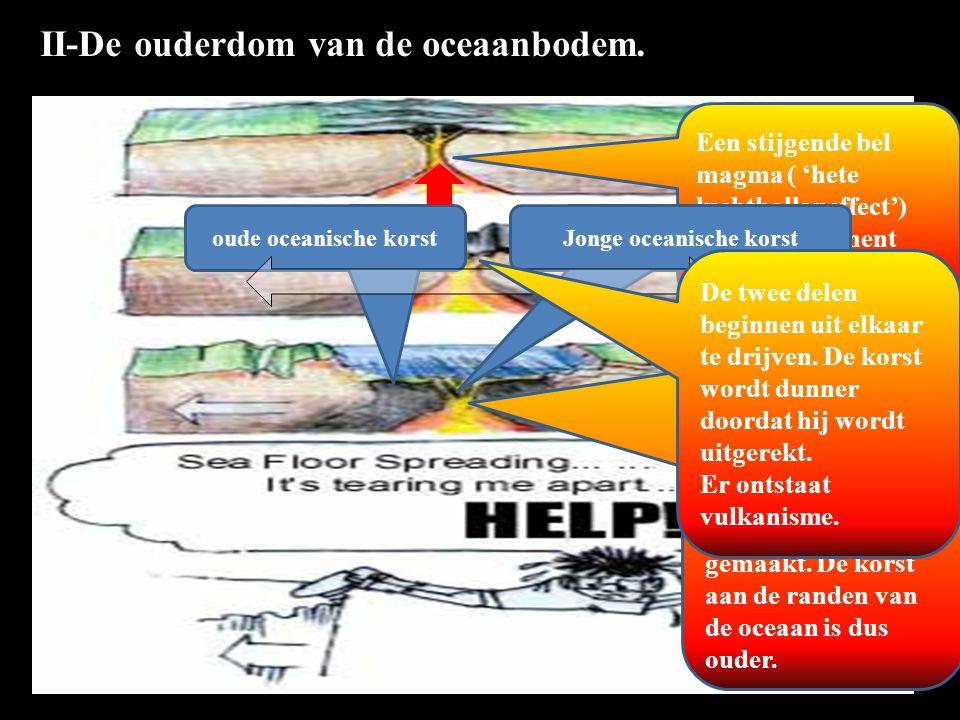 Jonge oceanische korst