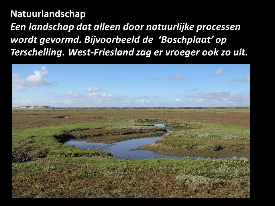 Natuurlandschap Een landschap dat alleen door natuurlijke processen wordt gevormd.