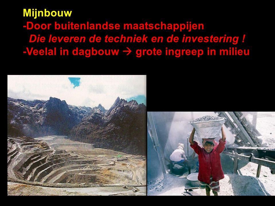 Mijnbouw -Door buitenlandse maatschappijen Die leveren de techniek en de investering .