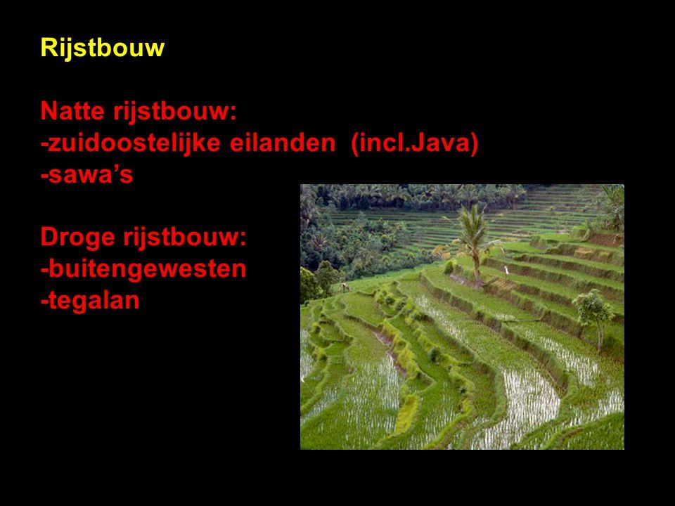 Rijstbouw Natte rijstbouw: -zuidoostelijke eilanden (incl.Java) -sawa's. Droge rijstbouw: -buitengewesten.