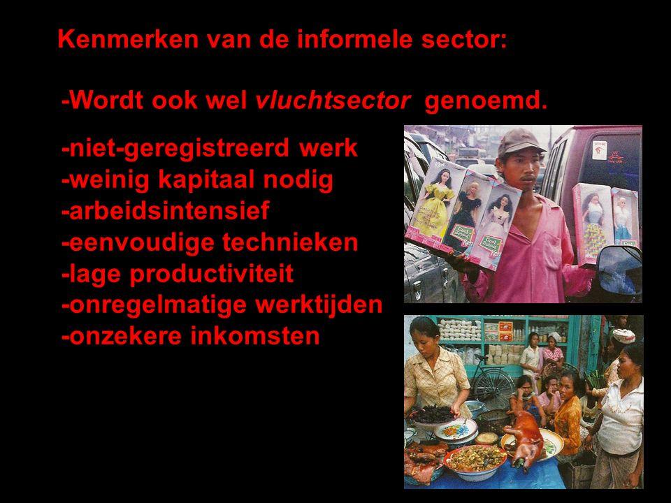 Kenmerken van de informele sector: