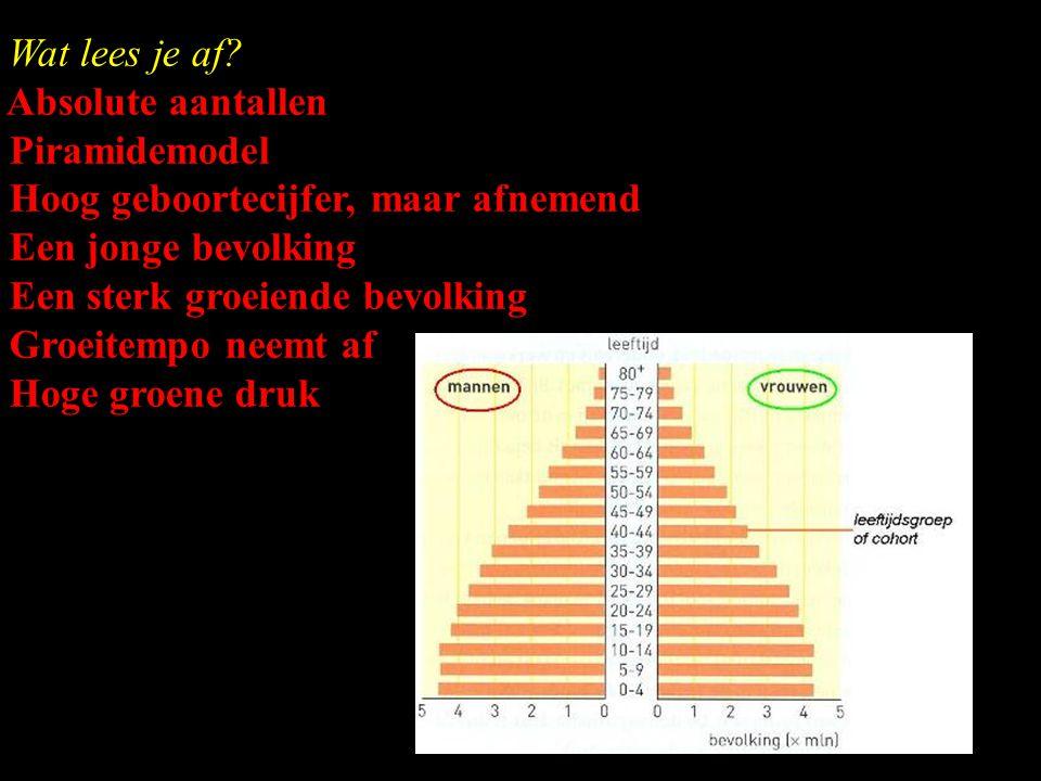 Wat lees je af Absolute aantallen. Piramidemodel. Hoog geboortecijfer, maar afnemend. Een jonge bevolking.