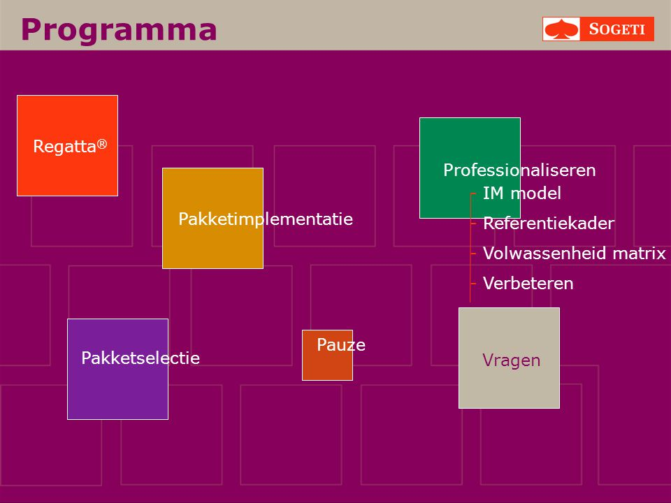 Programma Regatta® Professionaliseren - IM model - Referentiekader