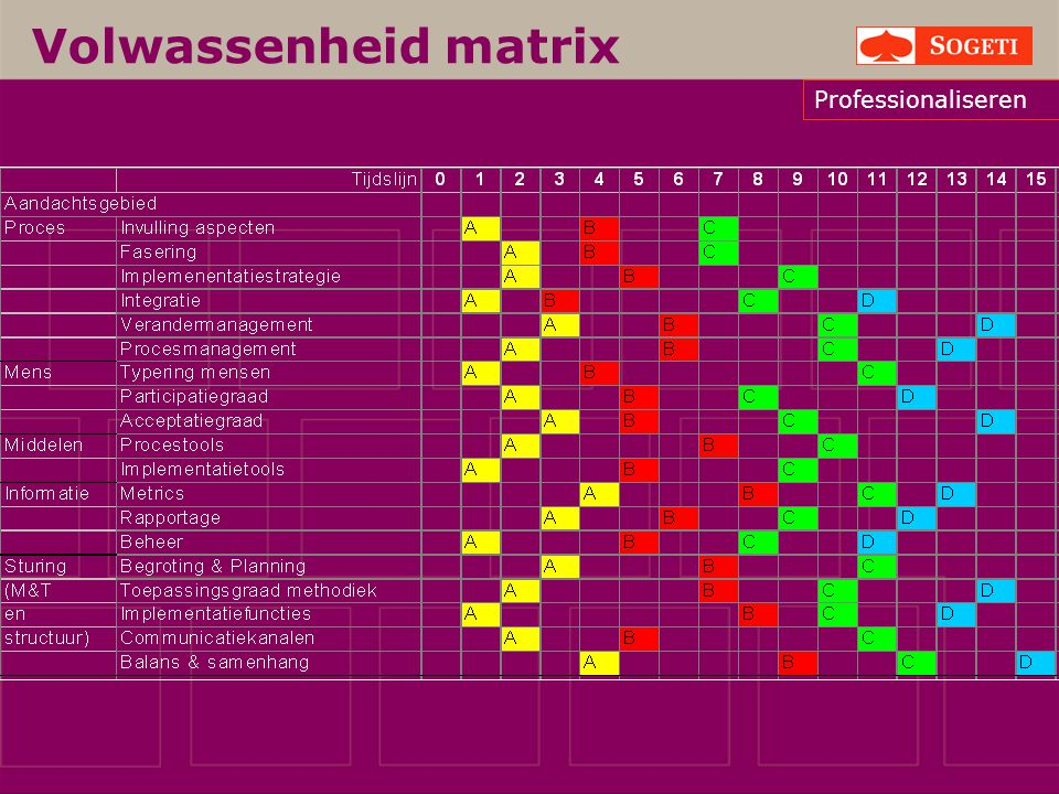 Volwassenheid matrix Professionaliseren