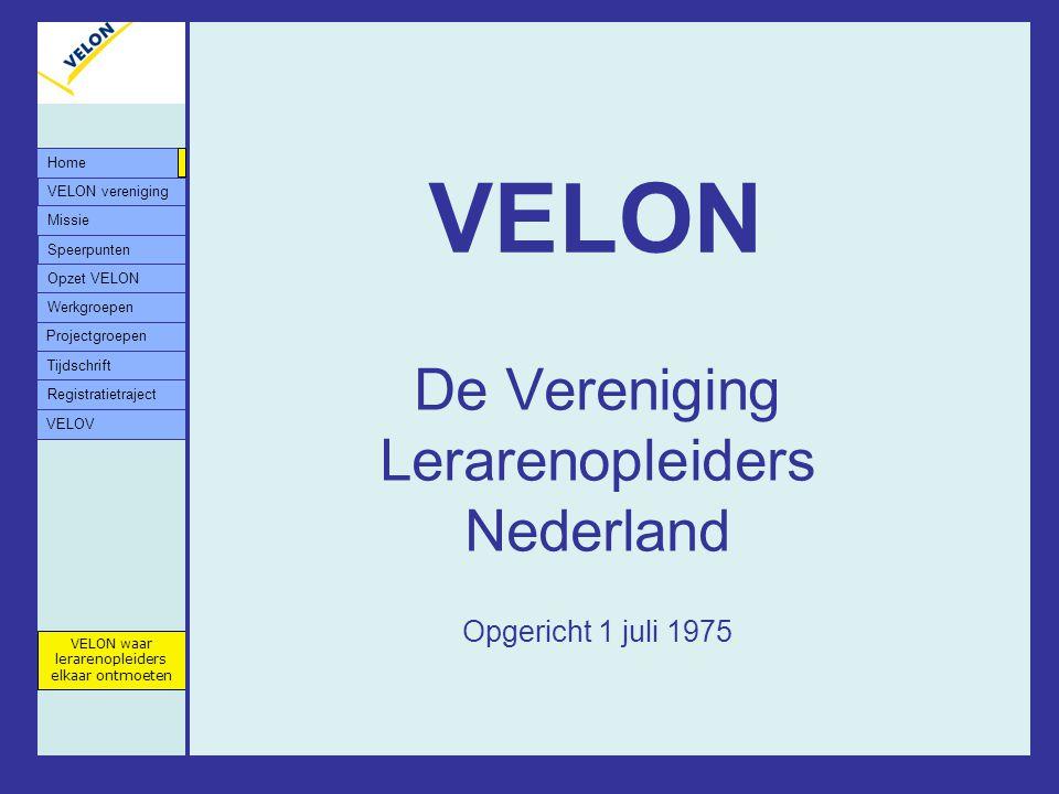 De Vereniging Lerarenopleiders Nederland Opgericht 1 juli 1975