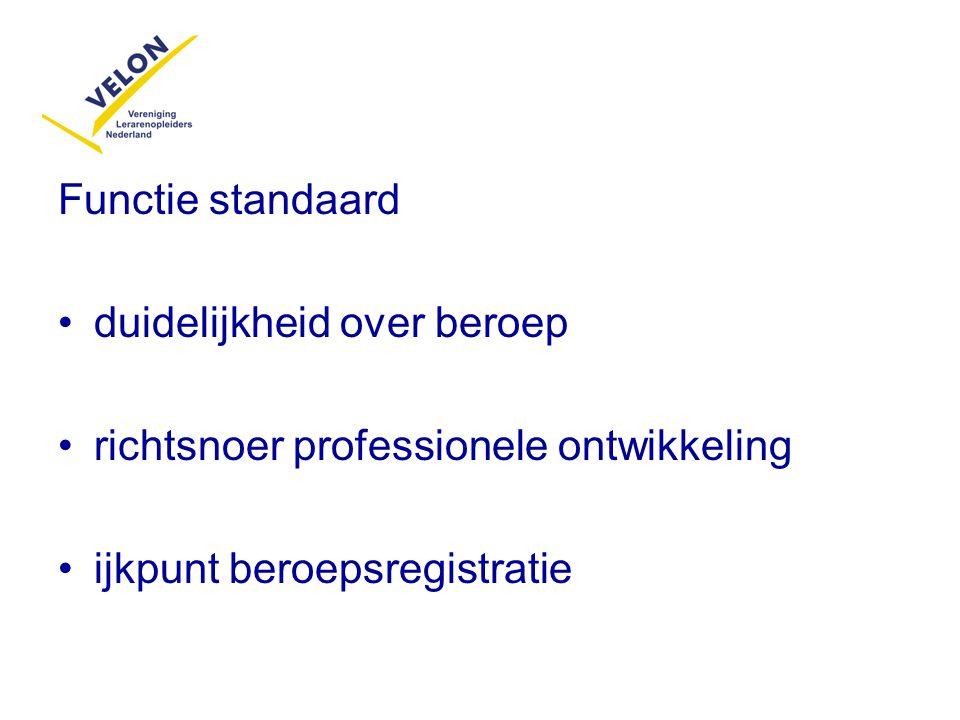Functie standaard duidelijkheid over beroep. richtsnoer professionele ontwikkeling.