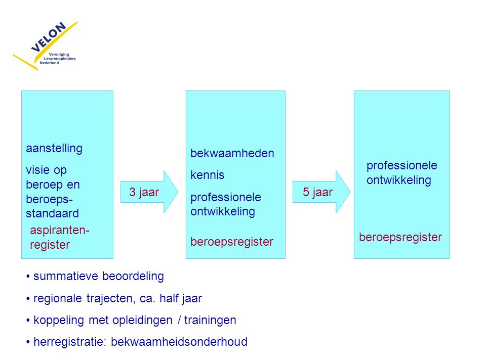 aanstelling visie op beroep en beroeps-standaard. bekwaamheden. kennis. professionele ontwikkeling.