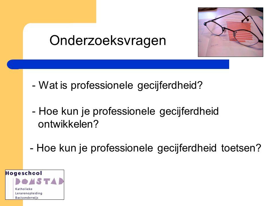 Onderzoeksvragen - Wat is professionele gecijferdheid