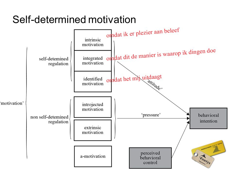 Self-determined motivation