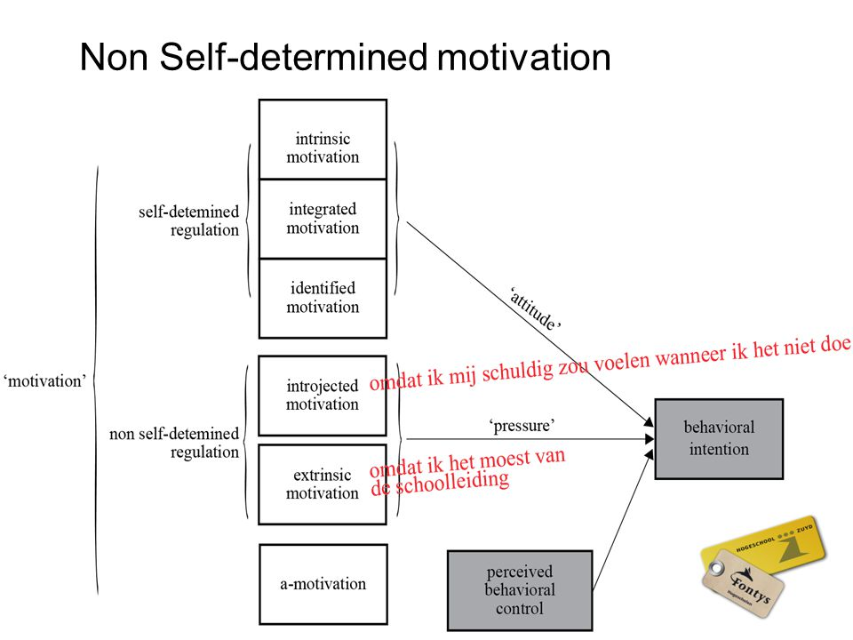 Non Self-determined motivation