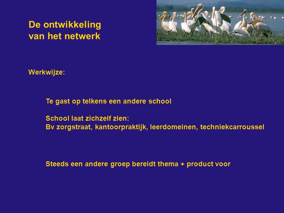 De ontwikkeling van het netwerk Werkwijze: