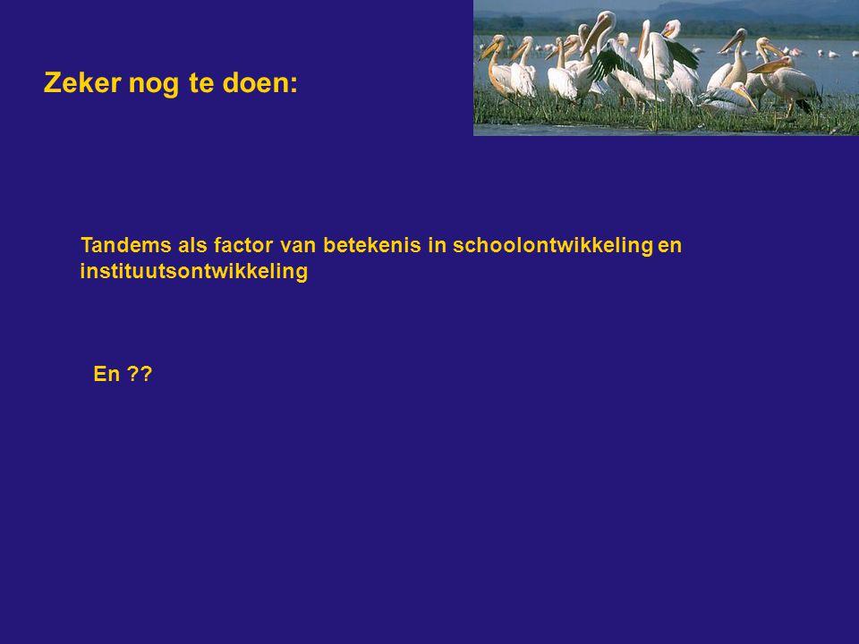 Zeker nog te doen: Tandems als factor van betekenis in schoolontwikkeling en instituutsontwikkeling.