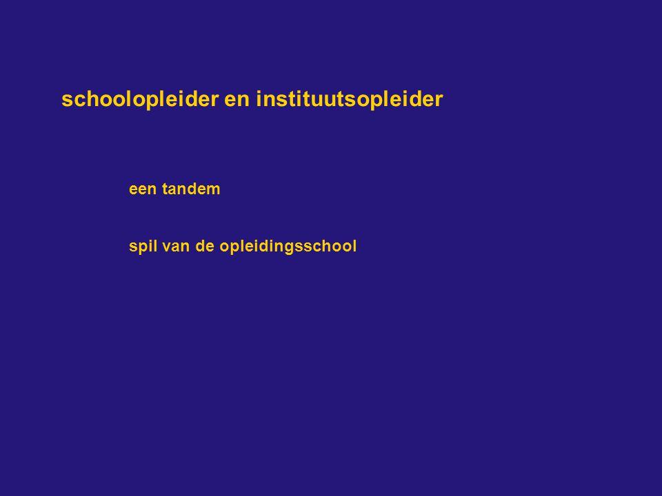 schoolopleider en instituutsopleider